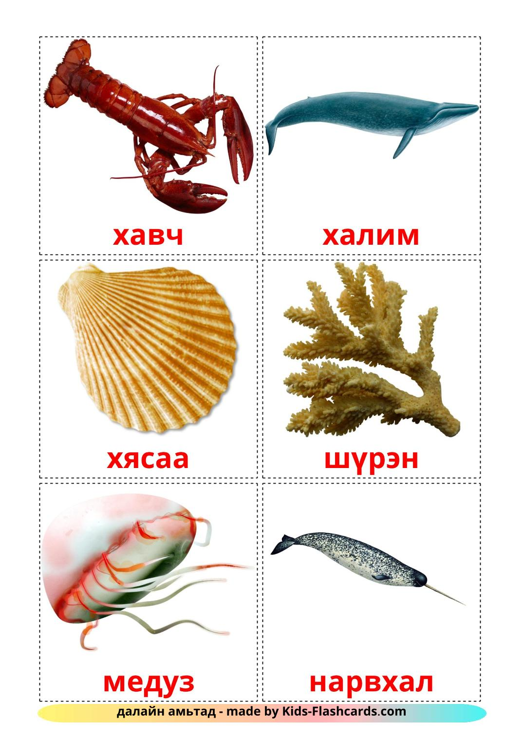 Sea animals - 29 Free Printable mongolian Flashcards