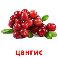 цангис picture flashcards