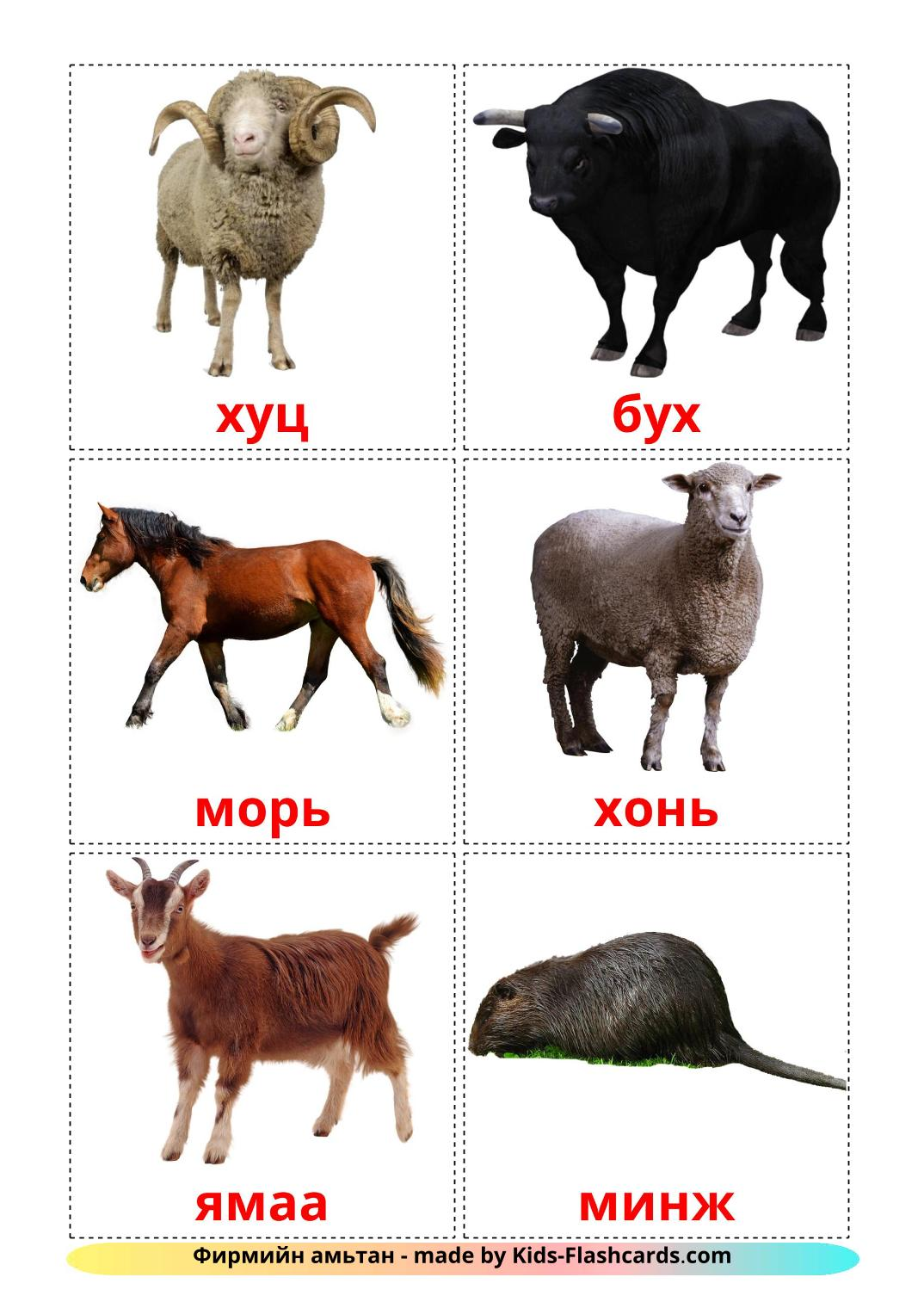 Farm animals - 15 Free Printable mongolian Flashcards