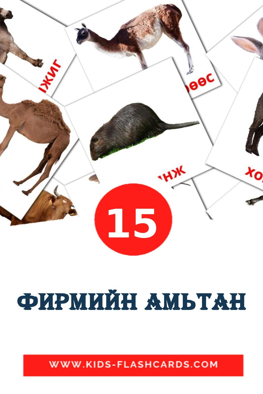 15 Фирмийн амьтан Picture Cards for Kindergarden in mongolian