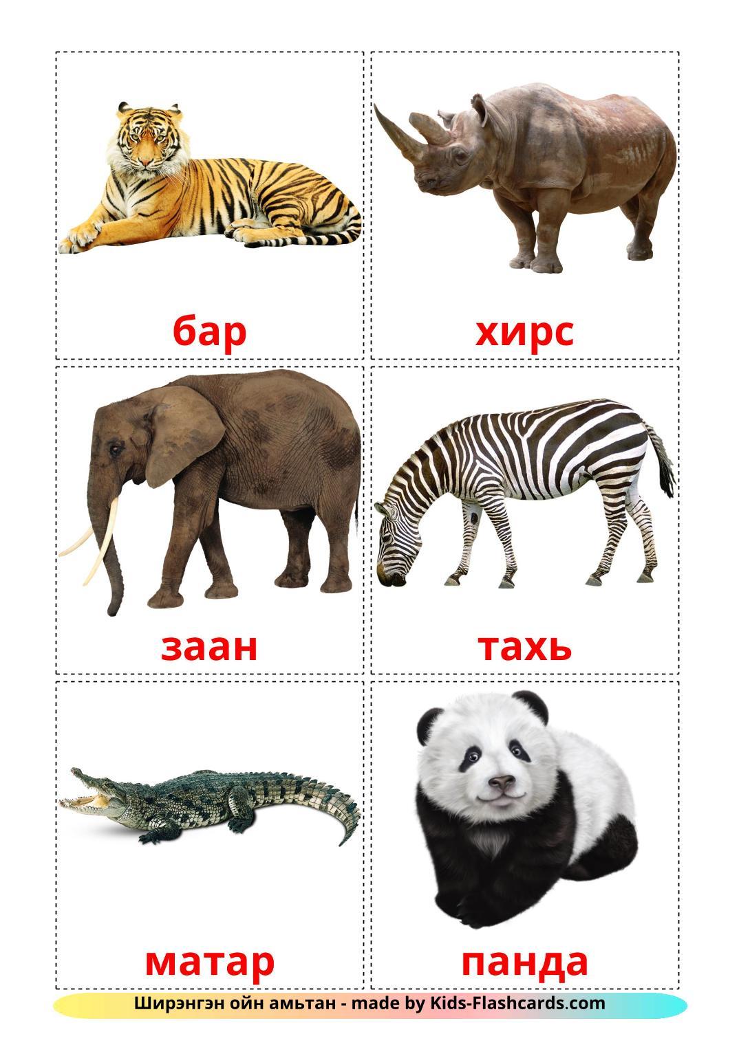Jungle animals - 21 Free Printable mongolian Flashcards