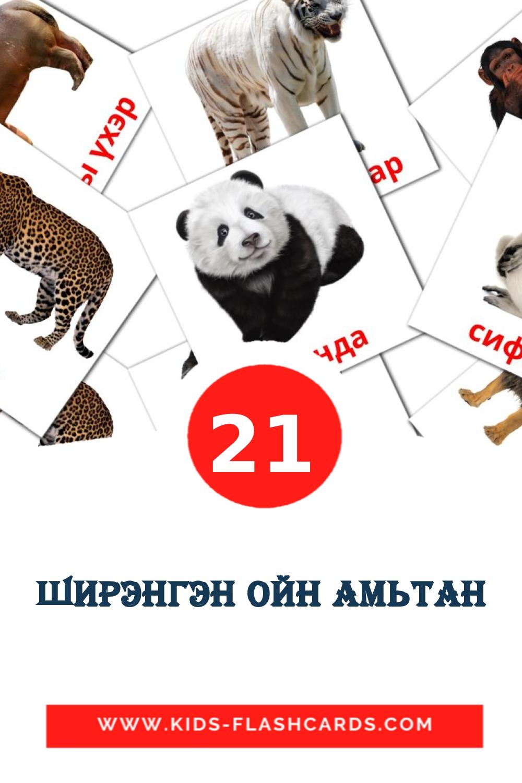 21 Ширэнгэн ойн амьтан Picture Cards for Kindergarden in mongolian
