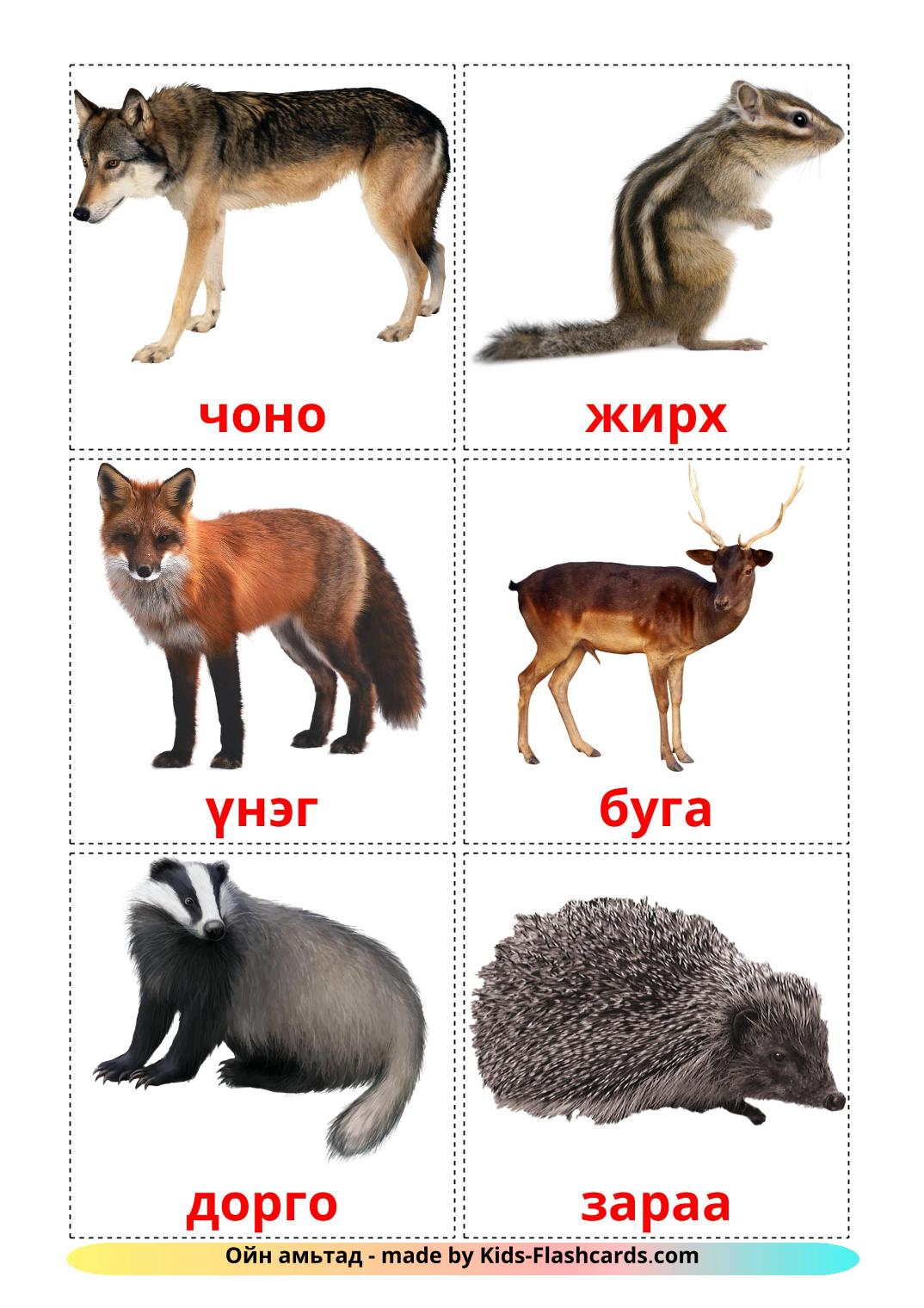 Forest animals - 22 Free Printable mongolian Flashcards