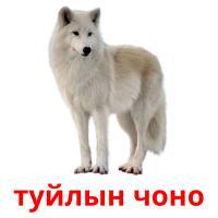 туйлын чоно picture flashcards
