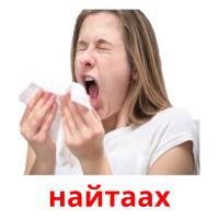 найтаах picture flashcards