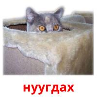нуугдах picture flashcards