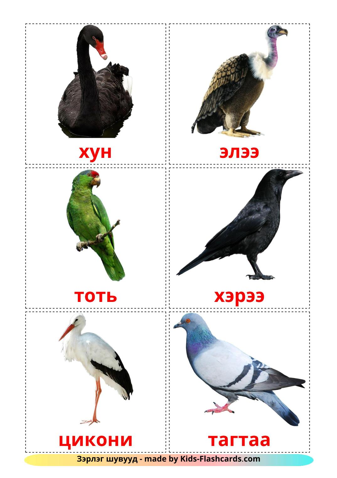 Wild birds - 18 Free Printable mongolian Flashcards