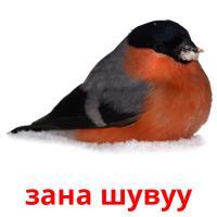 зана шувуу picture flashcards