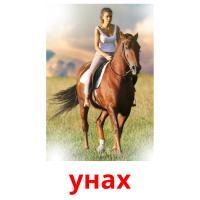 унах picture flashcards