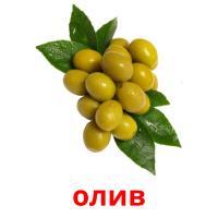 олив picture flashcards