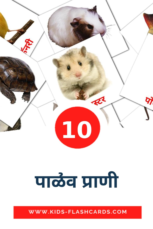 10 पाळीव प्राणी Picture Cards for Kindergarden in marathi