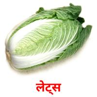 लेट्स picture flashcards