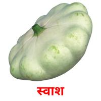 स्वाश picture flashcards