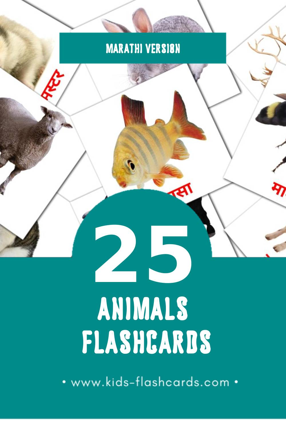 Visual प्राणी Flashcards for Toddlers (25 cards in Marathi)