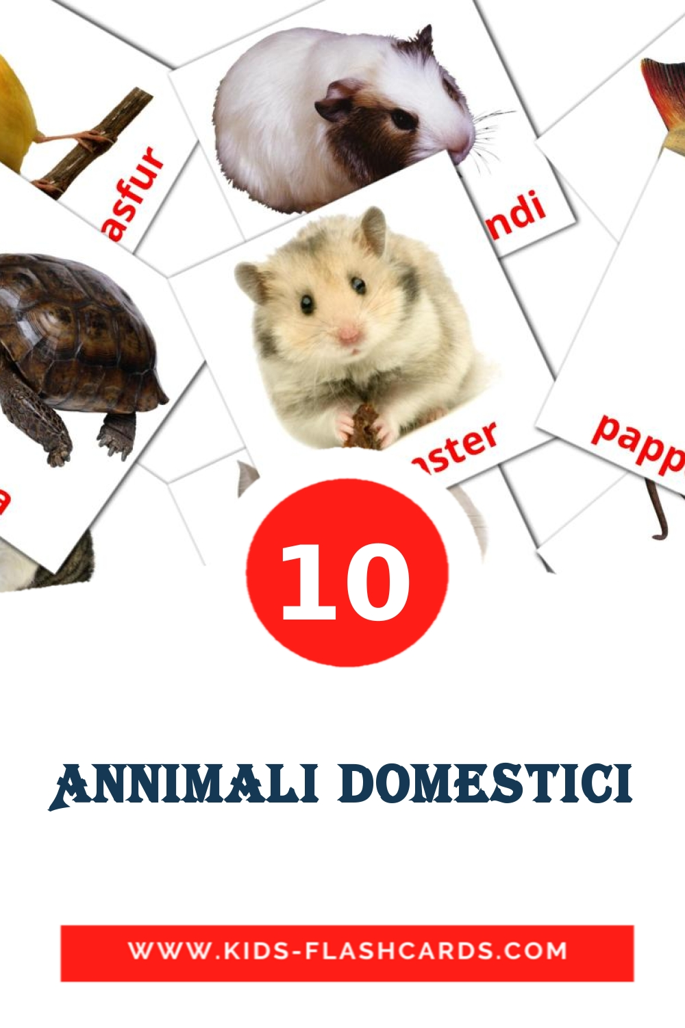 10 Annimali domestici Picture Cards for Kindergarden in maltese
