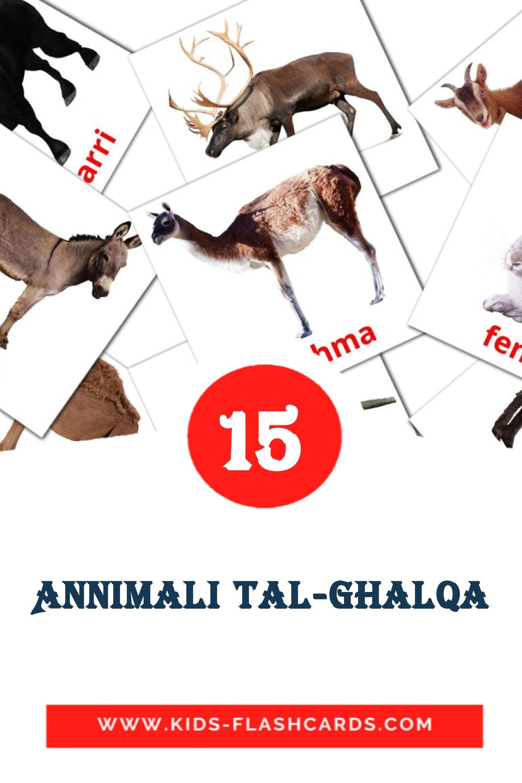 15 Annimali tal-ghalqa Picture Cards for Kindergarden in maltese