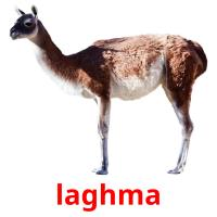 laghma picture flashcards