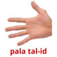 pala tal-id picture flashcards