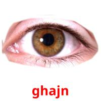 ghajn picture flashcards