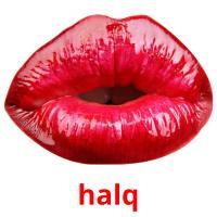 halq picture flashcards