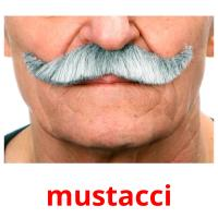 mustacci picture flashcards