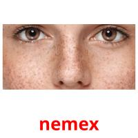 nemex picture flashcards