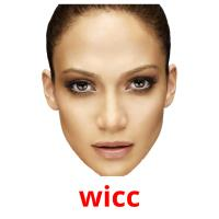 wicc picture flashcards