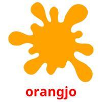 orangjo picture flashcards