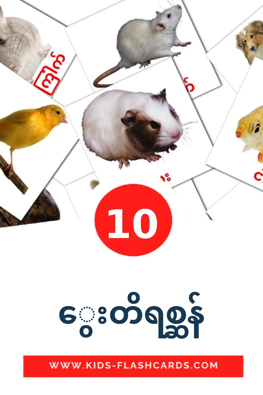 10 အိမ်မွေးတိရိစ္ဆာန်များ Picture Cards for Kindergarden in burmese