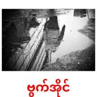 ဗွက်အိုင် picture flashcards