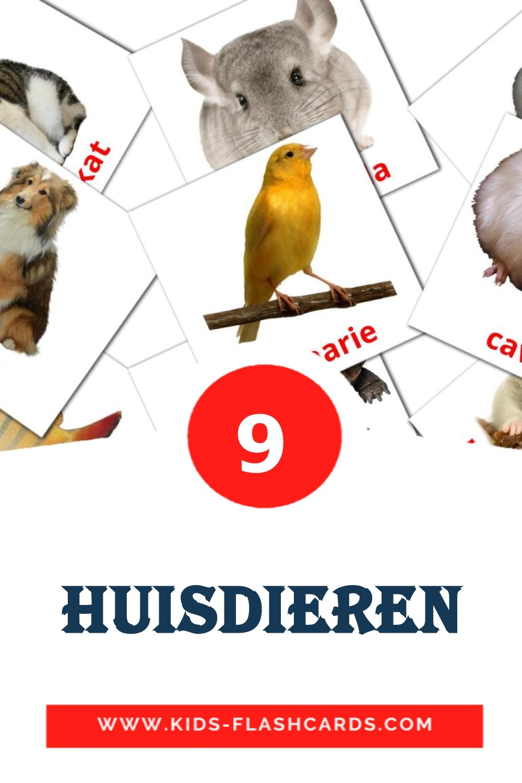9 Huisdieren Picture Cards for Kindergarden in dutch