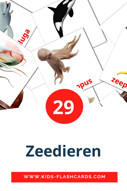 29 Zeedieren Picture Cards for Kindergarden in dutch
