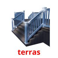 terras picture flashcards