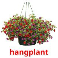 hangplant picture flashcards