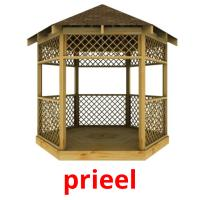 prieel picture flashcards