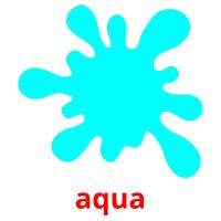 aqua picture flashcards