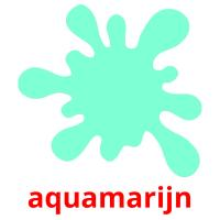 aquamarijn picture flashcards