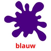 blauw picture flashcards