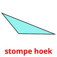 stompe hoek picture flashcards