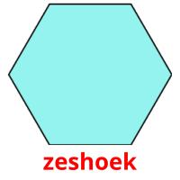 zeshoek picture flashcards