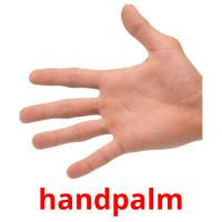 handpalm picture flashcards