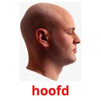 hoofd picture flashcards