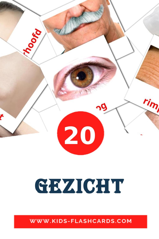 20 Gezicht Picture Cards for Kindergarden in dutch