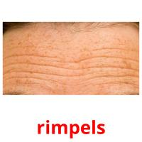 rimpels picture flashcards
