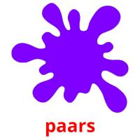 paars picture flashcards