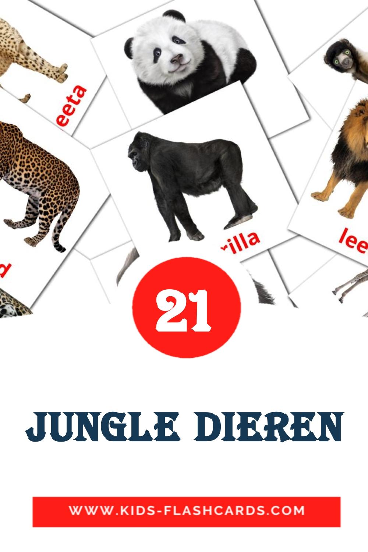 21 Wilde dieren Picture Cards for Kindergarden in dutch
