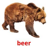 de beer picture flashcards