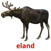 de eland picture flashcards