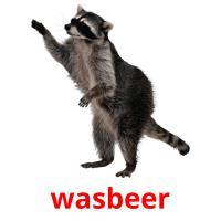 de wasbeer picture flashcards