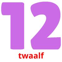 twaalf picture flashcards